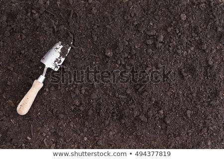 Fehér ásó hazugságok gazdag fekete föld Stock fotó © ozgur