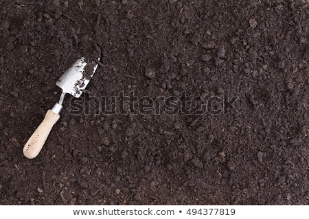 A single white spade lies in rich black soil Stock photo © ozgur