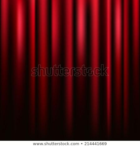 Piros bársony függöny vektor tér textúra Stock fotó © tuulijumala