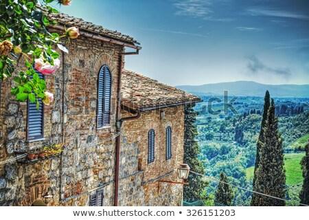 Toszkána tájkép tavasz Olaszország fa tavasz Stock fotó © benkrut