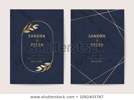 premium invitation card vector set Stock photo © SArts