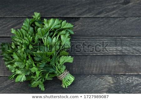 Friss petrezselyem köteg étel szakács diéta Stock fotó © M-studio