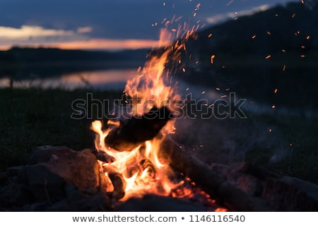 ash fire dark night stock photo © romvo