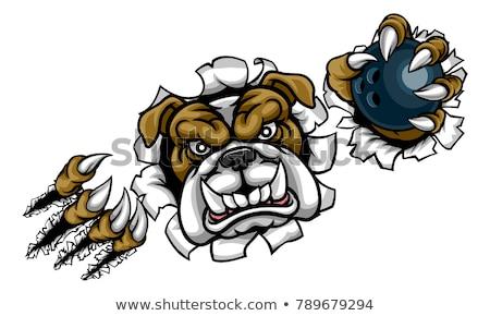 Bulldog chien boule de bowling sport mascotte Photo stock © Krisdog