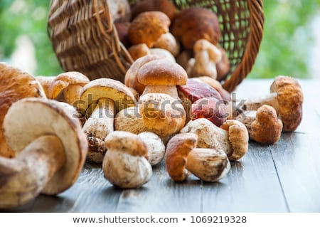 Porcini mushrooms on the wooden background Stock photo © Alex9500
