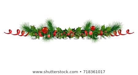 border fir tree branches with poinsettia foto d'archivio © cammep