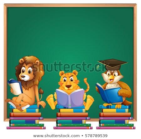 Frame design leone tigre lettura libri Foto d'archivio © colematt