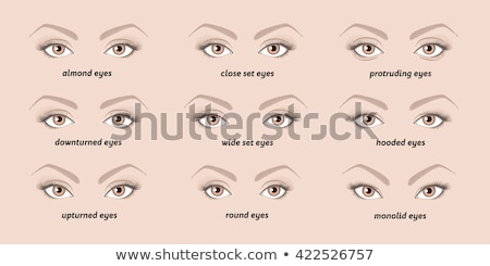 different shapes of eyes Stock photo © get4net
