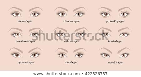 icon · oog · zicht · test · controleren · stick - stockfoto © get4net