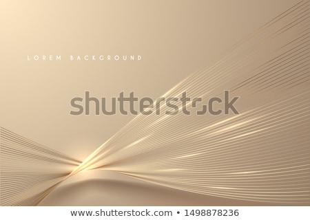 Arany absztrakt görbe terv illusztráció egyszerűsített Stock fotó © Blue_daemon