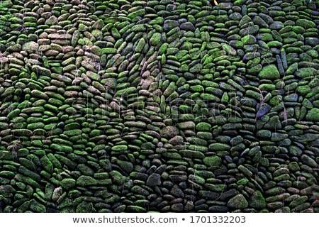 Textura velho pedras musgo bali estilo Foto stock © galitskaya