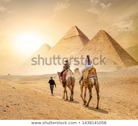 Caravan and the Pyramids Stock photo © Givaga