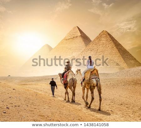 caravan and the pyramids stock photo © givaga