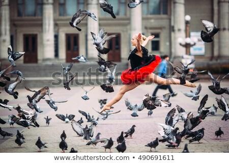 Dance · пару · подготовки · парка · женщину · трава - Сток-фото © kzenon