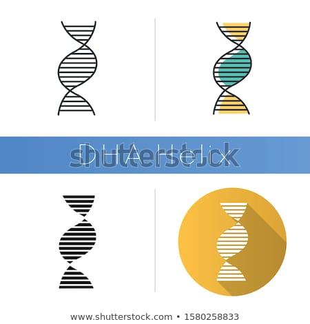 DNA struktury kwas czarny wektora chemia Zdjęcia stock © m_pavlov