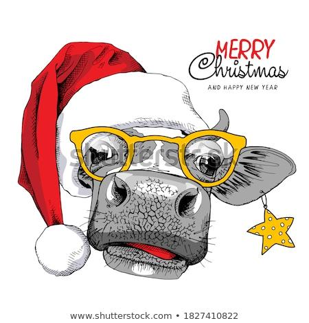 Vicces vidám karácsony boldog új évet évszak grafikus Stock fotó © JeksonGraphics