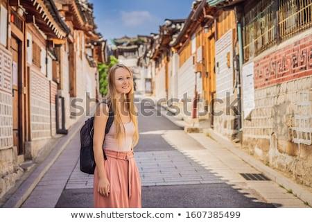 Dorp een beroemd plaats traditioneel huizen Stockfoto © galitskaya