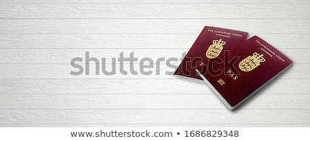 Danish passport Stock photo © leeser