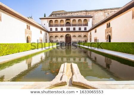 細部 · アルハンブラ宮殿 · 表示 · アーキテクチャ · 宮殿 - ストックフォト © neirfy