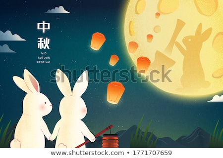 Rabbit silhouette on starry night sky. Stock photo © lenapix