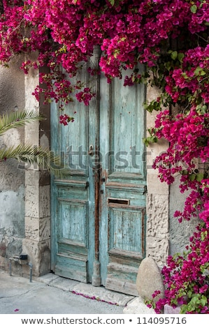 mediterrán · kék · ajtó · részletek · szigetek · Spanyolország - stock fotó © frank11