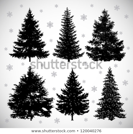 Branches of the Christmas fir-tree against a wood Stock photo © Kotenko