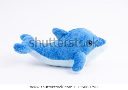 Randevú delfin edzővel