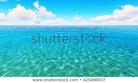 Tropical  sea coast in sunny day Stock photo © moses