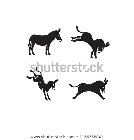 Vector icon donkey Stock photo © zzve