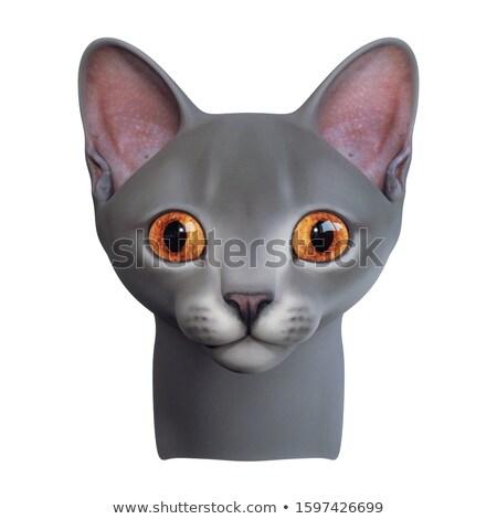 3D criatura carácter gris naranja blanco Foto stock © Melvin07