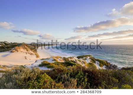 Pristine Australian beach Stock photo © jrstock