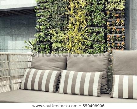 old wooden green wall stock photo © meinzahn