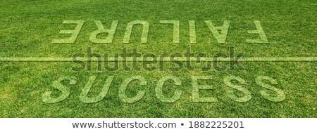 Erfolg Ausfall hellen Gold stehen über Stock foto © 3mc