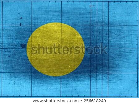 Palau zászló témák ötlet terv textúra Stock fotó © kiddaikiddee