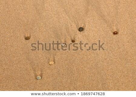 Zeven lijn witte bouw achtergrond Stockfoto © tilo