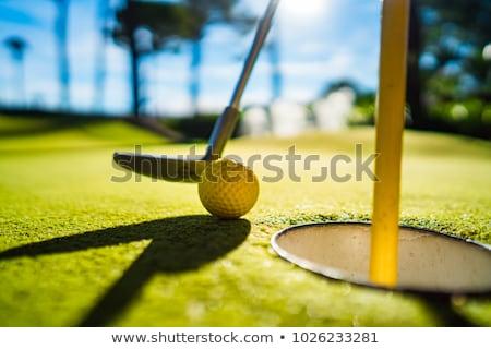 Louco golfe mini golfball buraco Foto stock © chris2766
