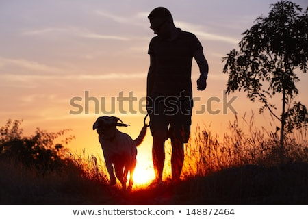 man and dog silhouette at sunset Stock photo © adrenalina