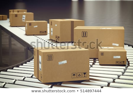 Roller Conveyor With Boxes stock photo © albund