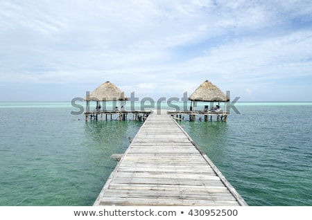 tropicales · plage · tropicale · bébé · Palm · ciel - photo stock © phbcz