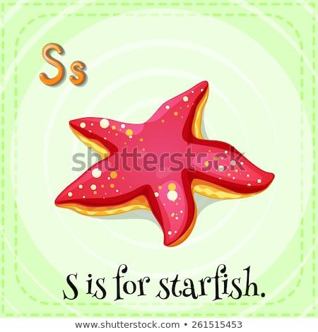Brief zeester witte papier vis ontwerp Stockfoto © colematt