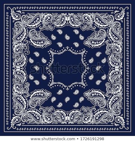 バンダナ · 印刷 · ベクトル · 飾り · シルク · 首 - ストックフォト © sanyal