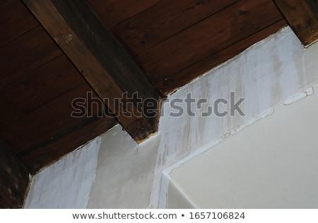 fából · készült · plafon · rózsaszín · fal · kicsi · szoba - stock fotó © romvo