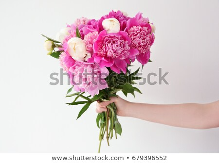 女の子 花屋 手 ホールド 新鮮な 自然 ストックフォト © artjazz
