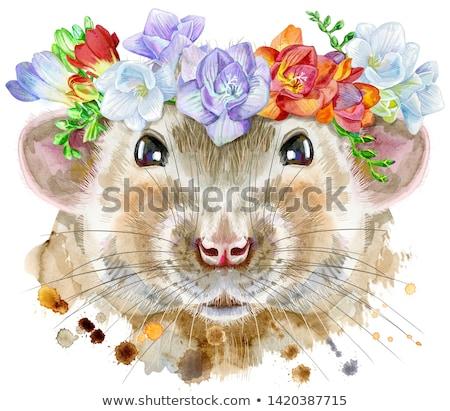 Watercolor portrait of white rat with freesia and eucalyptus wreath Stock photo © Natalia_1947