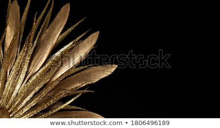 Abstrato preto escuro dourado contorno linhas Foto stock © SArts