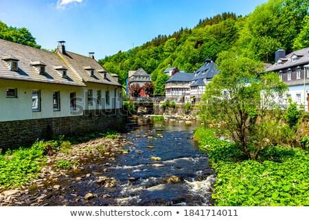 heuvel · Duitsland · stad · top · huis - stockfoto © borisb17