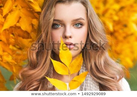 heureux · blond · fille · posant · automne · parc - photo stock © dashapetrenko