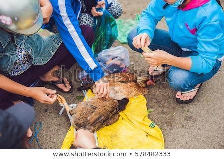 ázsiai · konyha · ízletes · tyúk · grillezett · hús · felszolgált · földimogyoró - stock fotó © galitskaya