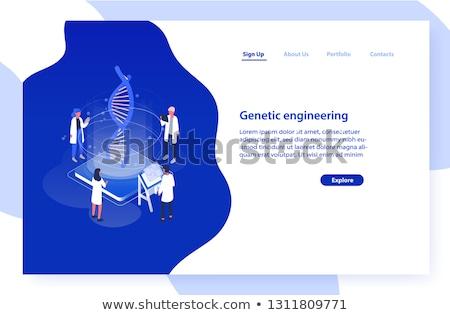 Genetik mühendislik şablon gen hile Stok fotoğraf © RAStudio