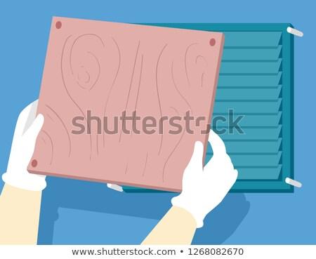 手 ハリケーン カバー 実例 手 木材 ストックフォト © lenm